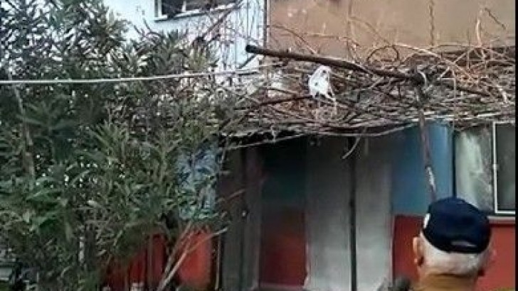 Elektrikli Battaniyeyle Yangın Çıktı