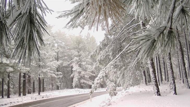 Kazdağları ve Uludağ'da Kar Yağışı